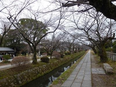 銀閣寺近くの哲学の道